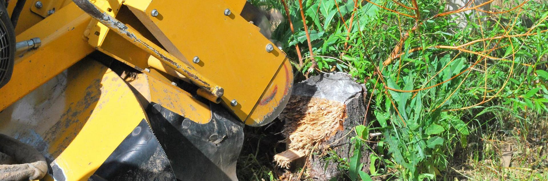<h2 style='color:#FFFFFF !important;                                              '>Stump Grinding </h2>                                             <span class='slideDesc'>One of our main services includes stump grinding. This is a tough job so be sure to call u</span>
