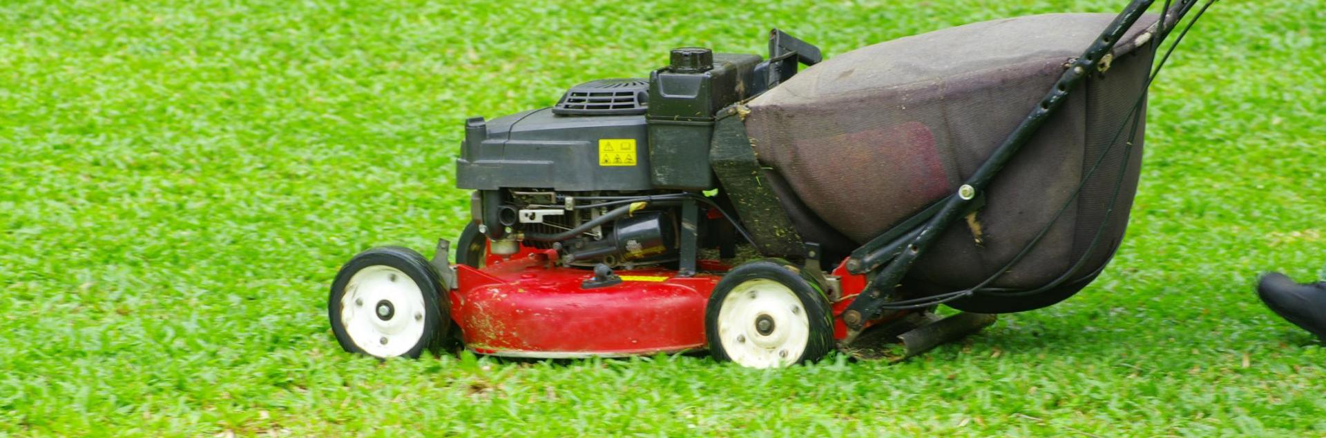 <h2 style='color:#FFFFFF !important;                                              '>In need of lawn care?</h2>                                             <span class='slideDesc'>We can mow, landscape and provide a full range of services when it comes to keeping your y</span>